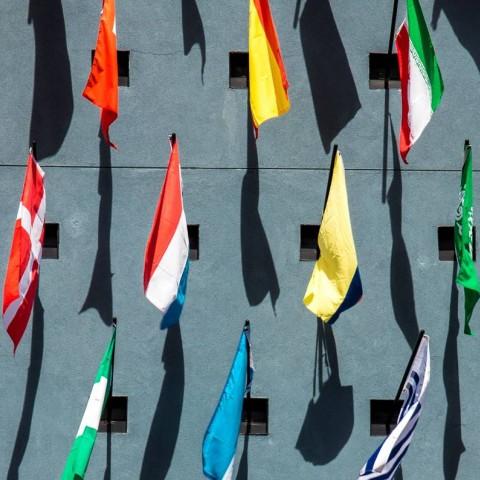 Tela de banderas